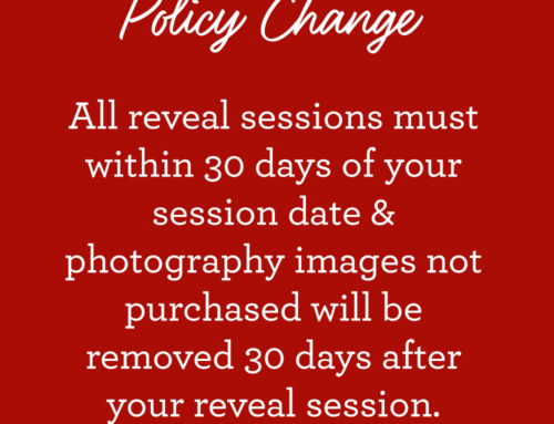 POLICY CHANGE: Photo Storage and Online Gallery Deletion